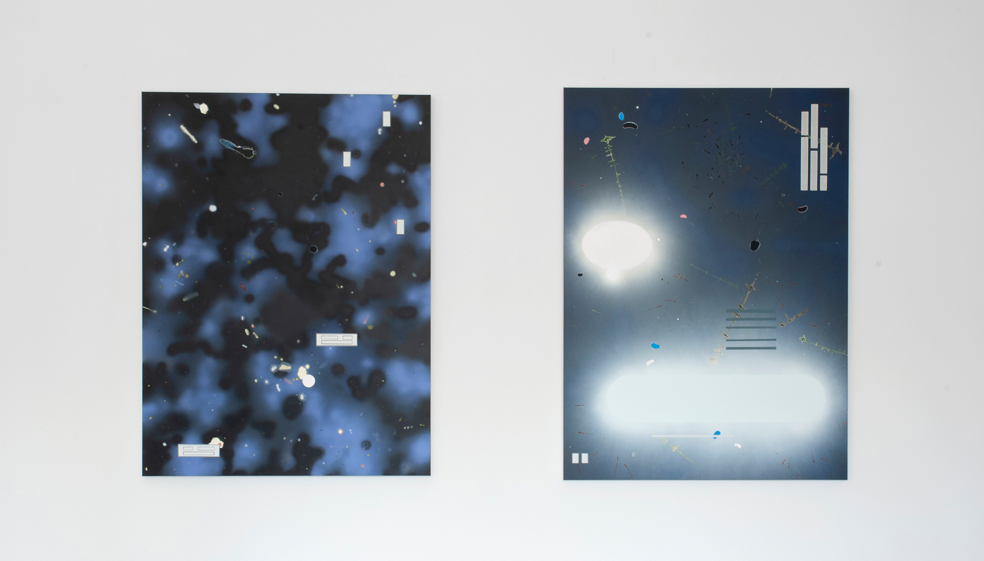 MVANHELLEMONT20200307 Galerie Onrust Han Schuil004 kopie2 kopie