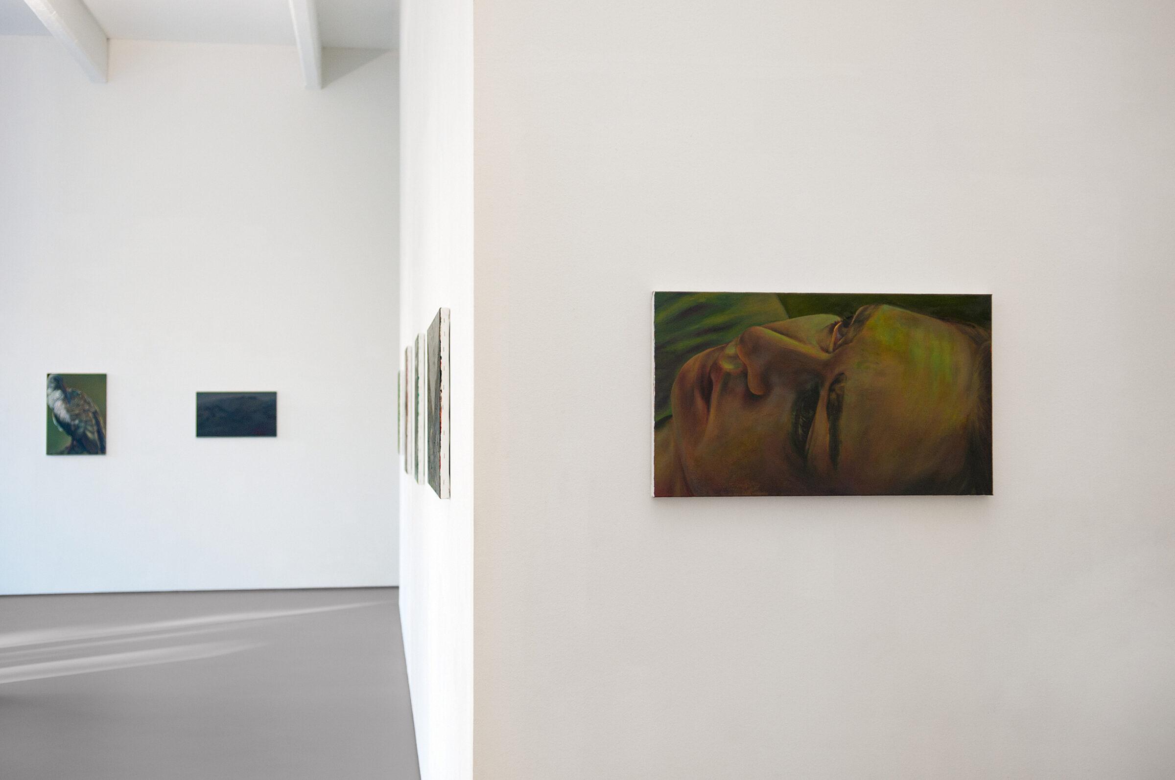 Ina_van_Zyl_-Galerie-Onrust-EX-landscape-01.jpg